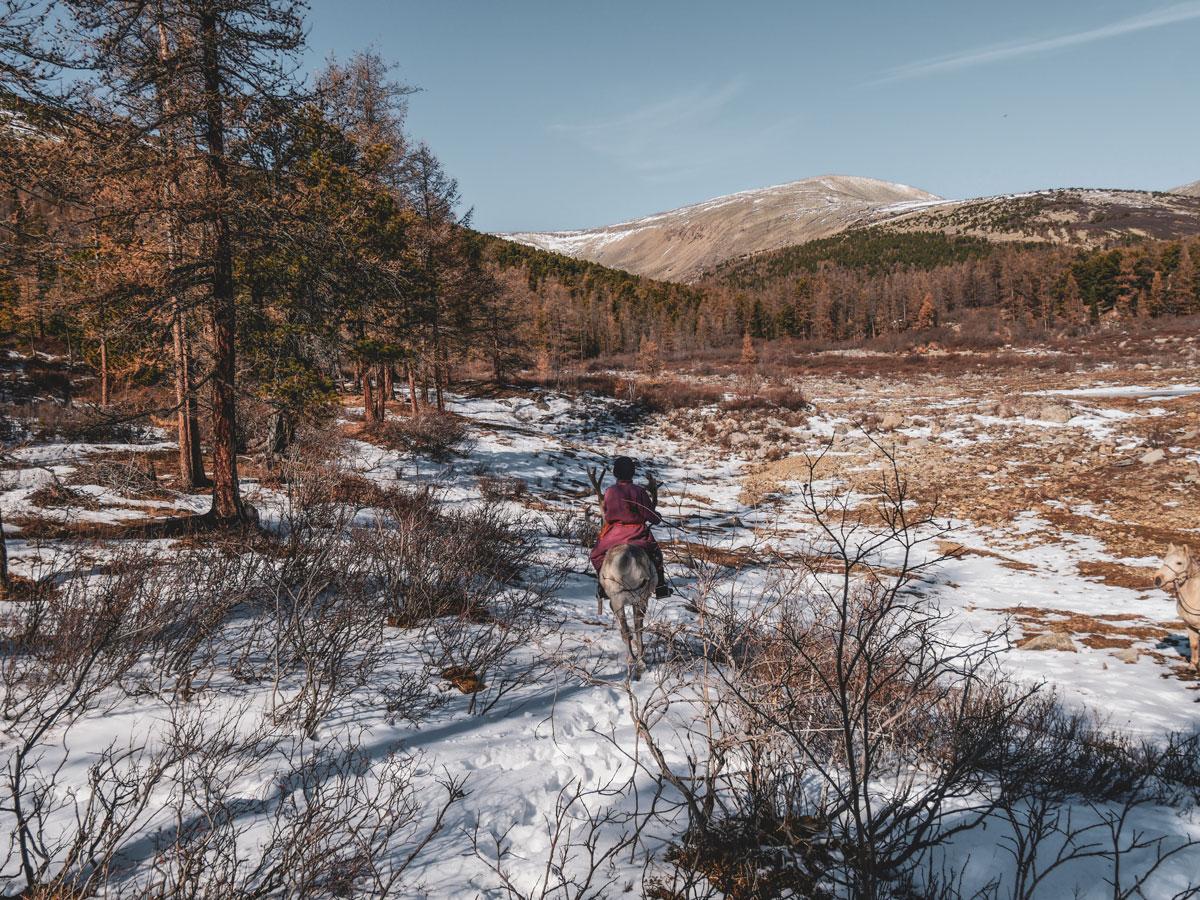 enfant sur un renne en mongolie