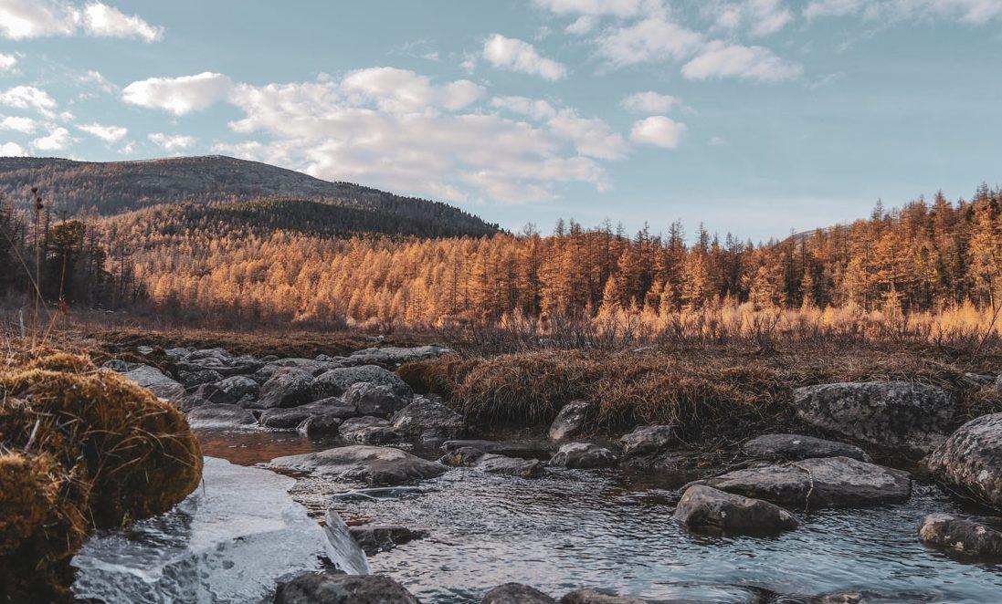 Paysage nord de la Mongolie
