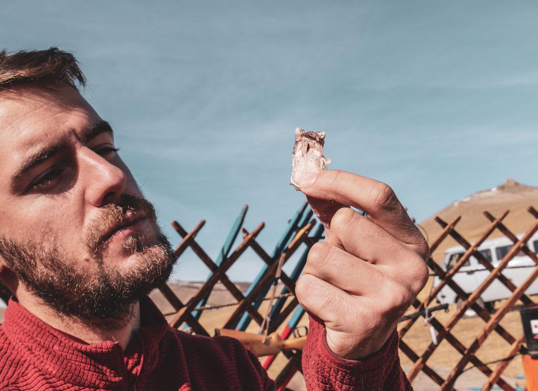 Ne jamais refuser une offrande en Mongolie