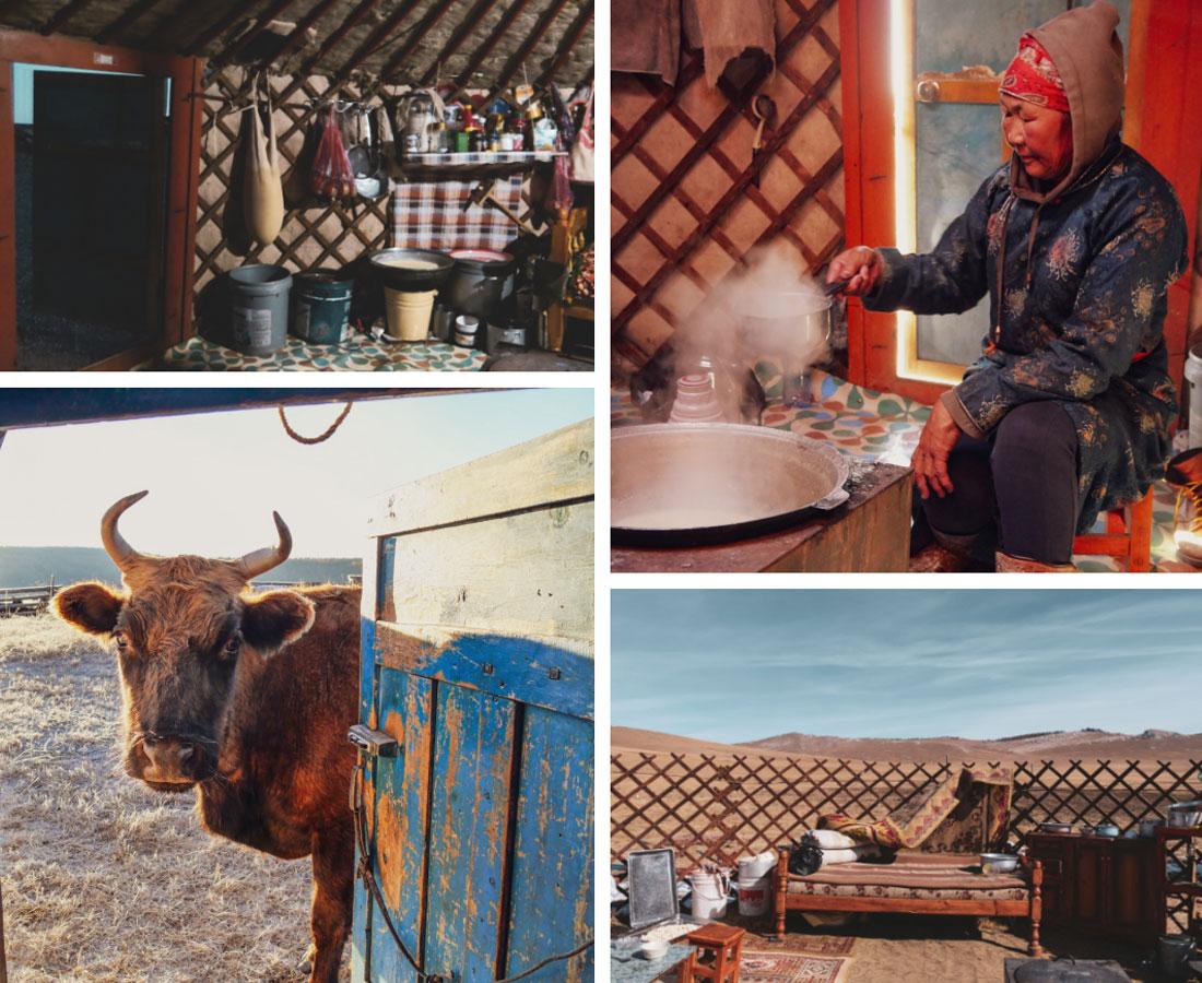 Vie des nomades en Mongolie